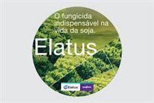 ELATUS (AZOXISTROBINA) + (BENZOVINDIFLUPIR)