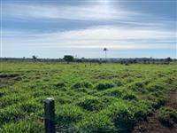 Fazenda entre Jaci Parana x união bandeirantes Rondonia Porto velho