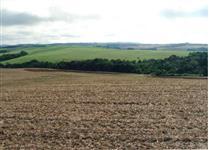 Mega Fazenda com 1.500 alqs para pecuária no Norte do Parana.