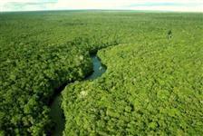 VENDO ÁREAS COM ICMBIO NO AMAZONAS, PARÁ E RONDÔNIA, PREÇOS A PARTIR DE R$ 400,00/ HECTARE