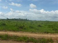Terras em local de expansão de produção de soja