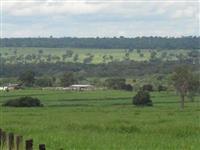 Fazenda em Nioaque - MS