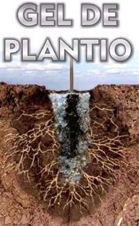 GEL DE PLANTIO Cria um reservatório contínuo de água e nutrientes, exatamente onde a planta precisa