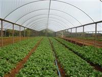 Estufa agrícola usada