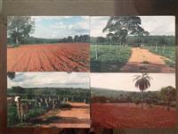Fazenda na margem de rio em Minas Gerais com jazidas de areia e silício.