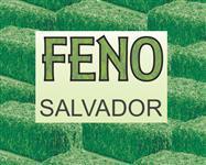FENO PARA CAVALOS FRETE INCLUSO