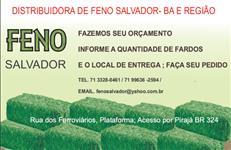 VENDA DE FENO PARA CAVALOS FRETE INCLUSO