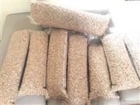 Nozes da india só 500 o kg