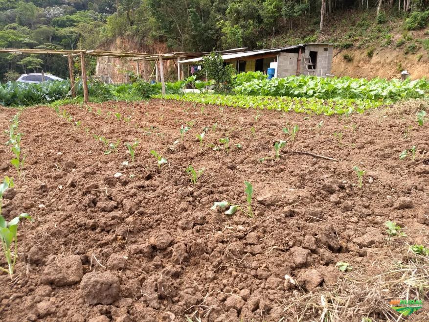 Fazenda Ecológica com Pousada