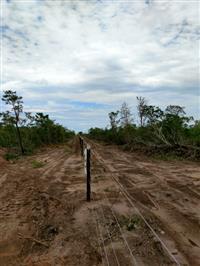 Fazenda Bahia 74.82 em alqueires goianos