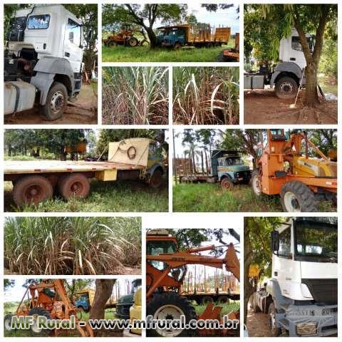 Plantio de cana manual / transporte de máquinas e equipamentos