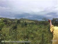 Propriedade com 2000 hectares