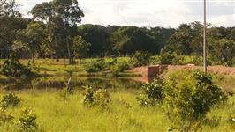Vendo Fazenda de 16,5 Porteira fechada em Aliança do Tocantins