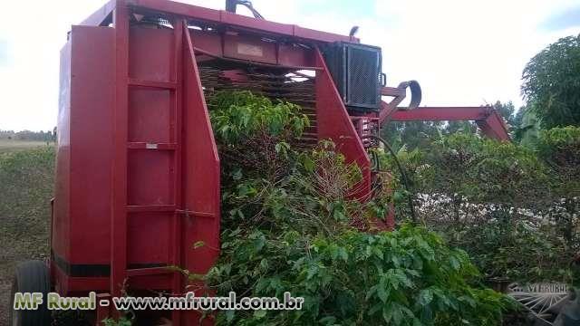 SERVIÇO COLHEITADEIRA