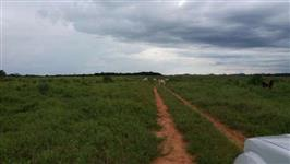 Fazenda Município Recursolândia- TO
