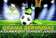 Sementes de Grama Bermudas - A grama escolhida pela FIFA.