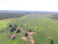 Fazenda MB município de João Pinheiro-MG