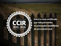 Documento Rural