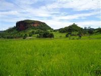 fazenda troca por fazenda no mato grosso do sul, regi�o de 3 lagoas