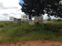 Fazenda  R$ 1.300,00 o Hectare – GO
