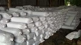 Silagem de Milho em Baixo Gunadu/ES.  SILAGEM ENSACADA DE 35KG - R$ 15,00 - BAIXO GUANDU/ES