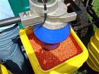 Tratamento de semente
