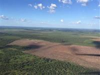 Arrendamento de 1.500 ha para plantio de Soja