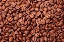 CAFÉ ARABICA TIPO EXPORTAÇÃO