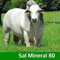 Sal Mineral 80 Goiás Nutrição Animal