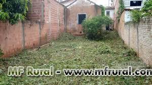 Serviços de jardinagem, jardineiro, corta grama