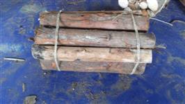 Procuro fornecedores de lenha de eucalipto em fardos com padrão especifico