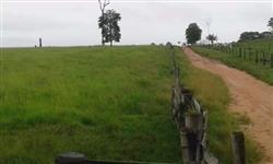 Fazenda  fica a 40 km da cidade de juara. ....São 2300  alqueires com 2100 alqueires Paulista form