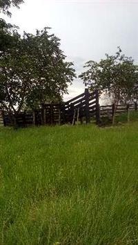 fazenda 500 hectares