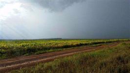 Fazenda Santo Antônio, Vilhena Rondônia