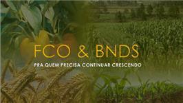 FCO OU BNDS PARA CONSTRUIR
