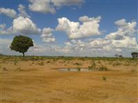 Fazenda Santa Rita II
