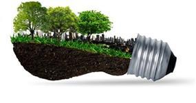 Venda de cavacos de pinus/eucaliptos e carvão vegetal