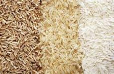 Engenho de arroz parbolizado e branco