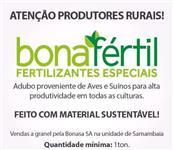 Bonafértil
