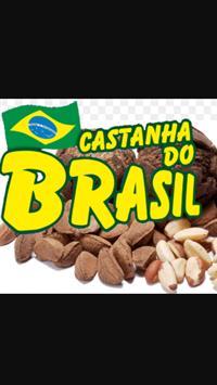 Castanha do Brasil