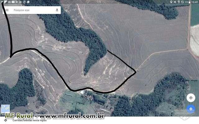 Área totalmente agricultável em Campo Mourão - Colônia Mourão