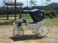 Carruagem Modelo Vitória