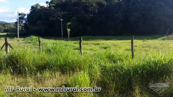 sitio 42 hectares ( 17 alqueires )