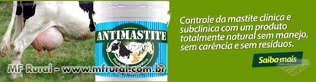 Antimastite Agrobovi Saúde Animal