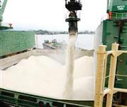 Açúcar ICUMSA 45, Arroz,milho,Soja,Etanol