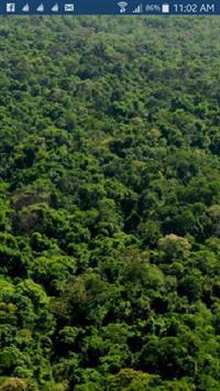Vendo reserva bioma mata atlântica