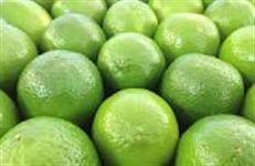 Vendo e compro limão taiti em carga fexada