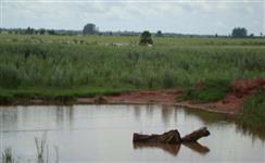 Fazenda para Agricultura e pecuaria em Dourados/MS