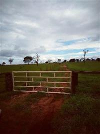 Fazenda para Pecúaria ou cana em Caarapó