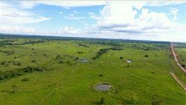 Arrendo área para agricultura no Pará